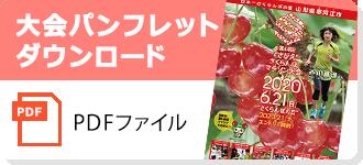 大会パンフレット(PDF)